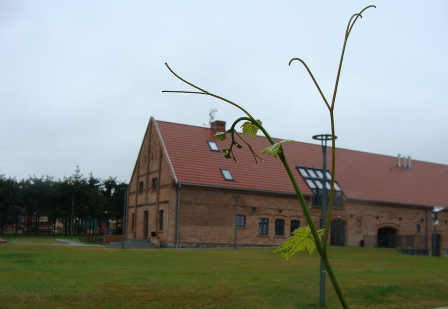 Winnica Turnau - budynek winiarni